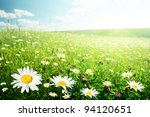 field of wild flowers | Shutterstock . vector #94120651