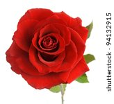 Stock photo red rose with leaves isolated on white 94132915
