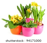 Colorful Spring Flowers In Pot...