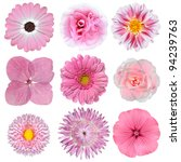 Stock photo collection of pink white flowers isolated on white background selection of daisy carnation 94239763