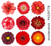 Stock photo selection of various red flowers isolated on white background set of nine dahlia gerber daisy 94239778