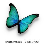 Stock photo blue butterfly isolated on white 94310722