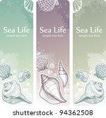 Banner With Seashells