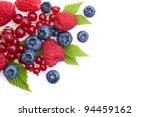 berries   Shutterstock . vector #94459162