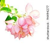flower on white background. | Shutterstock . vector #94494277