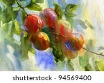 ripe red apples on branch.... | Shutterstock . vector #94569400