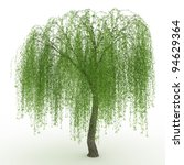3d Render Weeping Willow...