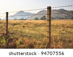 Barbed Wire Fence And Grass...