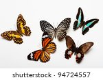 butterflies collection | Shutterstock . vector #94724557