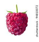 raspberry on white background....   Shutterstock .eps vector #94810072