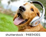 Stock photo cute dog listening to music with headphones outdoors 94854301