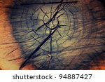 Tree Texture Background With...