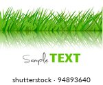 background with green grass.... | Shutterstock .eps vector #94893640