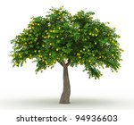 3d Rendered Orange Tree Full O...