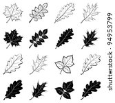 different leaves  set of black... | Shutterstock .eps vector #94953799