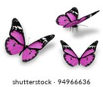 Stock photo three violet butterflies isolated on white 94966636