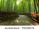 Famous Bamboo Grove At...