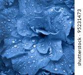 Beautiful Blue Flower