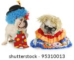 Dog Clowns   Male And Female...