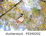 Great Spotted Woodpecker on a tree - stock photo
