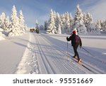 Cross Country Skiing On A ...
