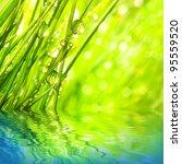 fresh morning dew on a spring... | Shutterstock . vector #95559520