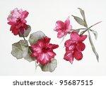 color illustration of flowers... | Shutterstock . vector #95687515