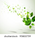 raster version of summer branch ... | Shutterstock . vector #95803759