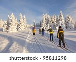 A Group Of Cross Country Skier...