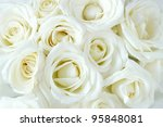 Stock photo soft full blown white roses as a background 95848081