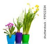 beautiful spring flowers in...   Shutterstock . vector #95922334