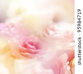 Stock photo beautiful roses surrounded with other fowers made with color filters 95984719