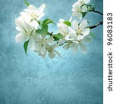 Photo Of Blossoming Tree Brunc...