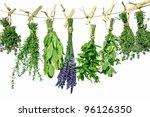 Sweet  Herbs Herbs Hanging To...
