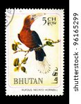 "Small photo of BHUTAN - CIRCA 1968: A stamp printed in Bhutan shows the image of a bird - Aceros nipalensis with the inscription ""Rufous necked hornbill"" from the series ""Rare Birds"", circa 1968"