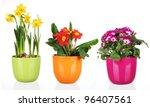 spring flowers in flowerpots ... | Shutterstock . vector #96407561