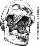 Screaming Vector Skull...
