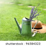 Lavender In Watering Can  Hat...