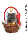 Rabbit easter - stock photo