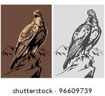 america,art,bird,black,claw,clip,decorative,design,drawing,eagle,eye,feather,graphic,hawk,head