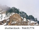 mountains range with trees in mist - stock photo