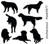 Stock vector set of dogs silhouette isolated 96669877