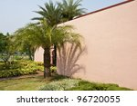 Date palm shadow - stock photo