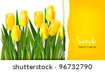 Spring Flower Background With...