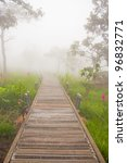 a walk way in siam tulip field | Shutterstock . vector #96832771