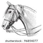 Stock vector horse head vintage illustration from meyers konversations lexikon 96854077