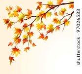 Autumn Maple Tree Branch On...