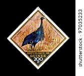 "Small photo of GUINEA - CIRCA 1971: A stamp printed in Republic of Guinea shows a Vulturine guineafowl with the inscription ""Acryllium vulturinum"" from the series ""Wild Birds"", circa 1971"