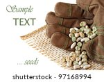 Gloved hand with assorted vegetable seeds on white background with copy space. - stock photo