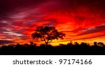 African Sunset In The Kruger...